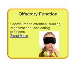 Olfactory Weakness